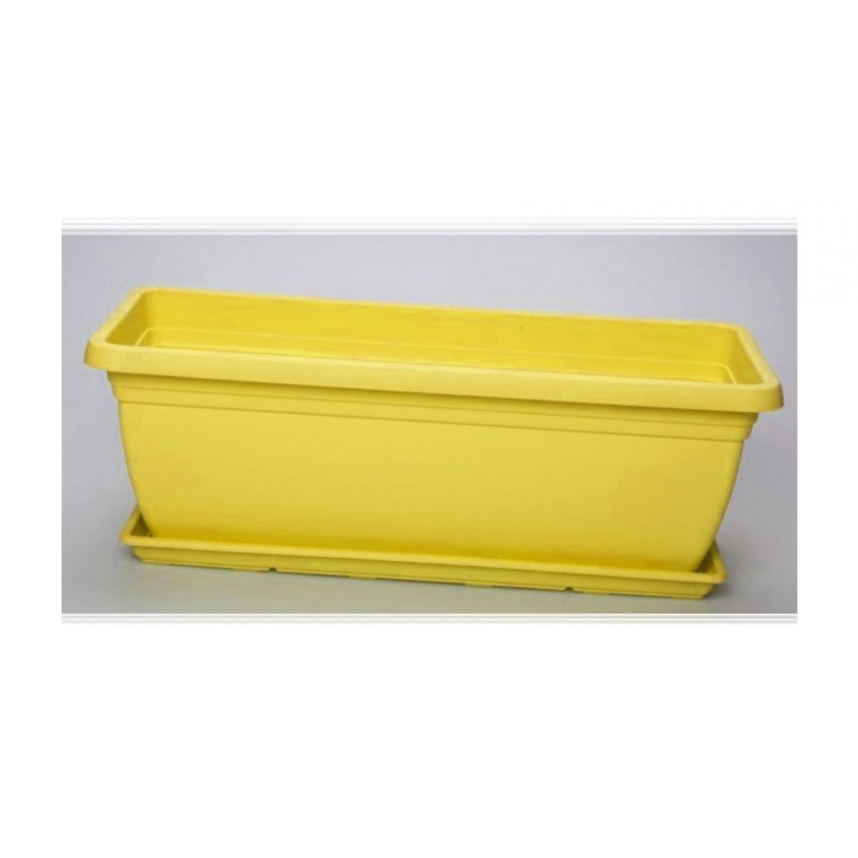 Mojito 40 Κίτρινη|kipogeorgiki.gr