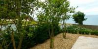 Αειθαλείς Θάμνοι Παραλιακών Κήπων & Νησιώτικων Περιοχών