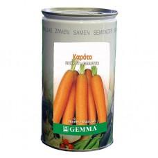 Καρότο R0551C 500 g Σπόρος σε Κονσέρβα | kipogeorgiki.gr