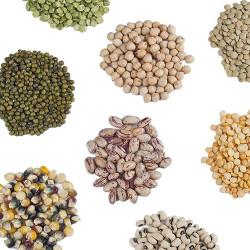 Σπόροι Λαχανικών Επαγγελματικοί