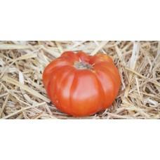 Ντομάτα Καλαμάτας βιολογική|kipogeorgiki.gr