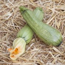 Βιολογικά λαχανικά Κολοκυθάκι Ντόπιο
