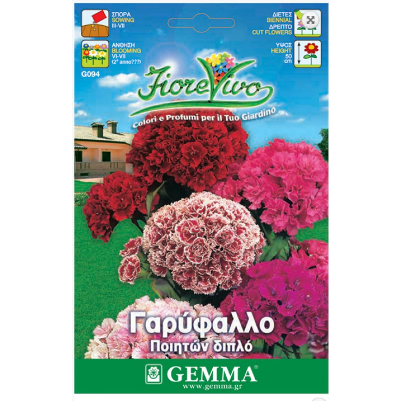 Γαρύφαλλο ποιητών διπλό σπόροι|kipogeorgiki.gr