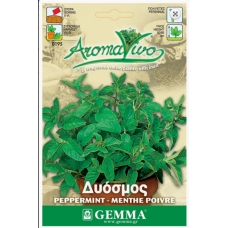 Δυόσμος σπόροι|kipogeorgiki.gr