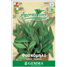 Φασκόμηλο σπόροι kipogeorgiki.gr