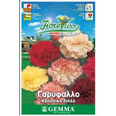 Γαρύφαλλο κοινό διπλό σπόροι|kipogeorgiki.gr