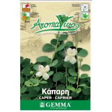 Κάπαρη σπόροι|kipogeorgiki.gr