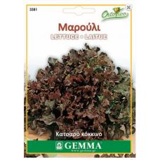 Μαρούλι Κατσαρό Κόκκινο Σπόροι (Lactuca sativa) | kipogeorgiki.gr