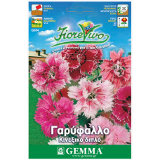 Γαρύφαλλο κινέζικο διπλό σπόροι|kipogeorgiki.gr
