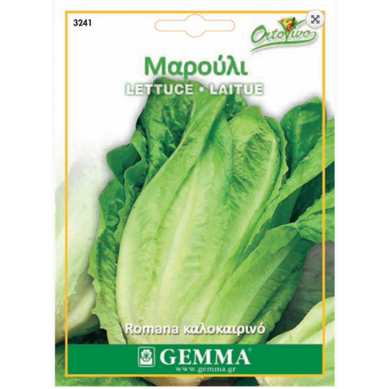 Μαρούλι Romana Καλοκαιρινό Σπόροι (Lactuca sativa) | kipogeorgiki.gr