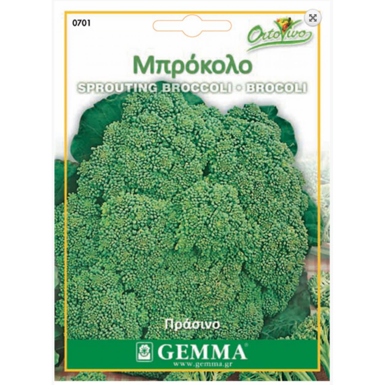 Μπρόκολο Calabrais Σπόροι (Brassica oleracea var. Italic) | |kipogeorgiki.gr