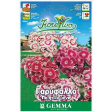Γαρύφαλλο ποιητών μονό σπόροι|kipogeorgiki.gr