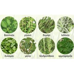 Σπόροι Αρωματικών Φυτών